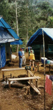 Camp Jungle